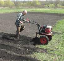 Использование мотоблока для выращивания картофеля
