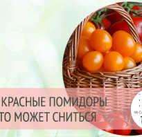 К чему снятся помидоры толкование по надежным сонникам