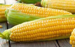 Какой сорт кукурузы нужен для попкорна